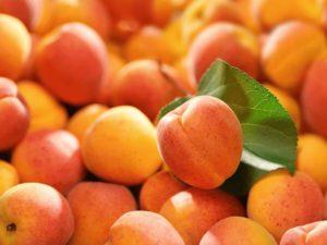 walliser-aprikosen.ch